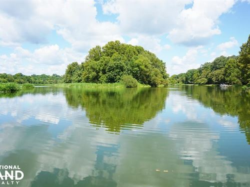 Black Warrior River Island : Stewart : Hale County : Alabama