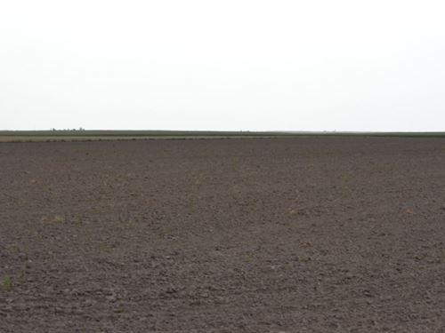 Larry C Fenster Trust Dryland : Chappell : Deuel County : Nebraska