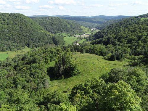 Button Farm : Chelsea : Orange County : Vermont