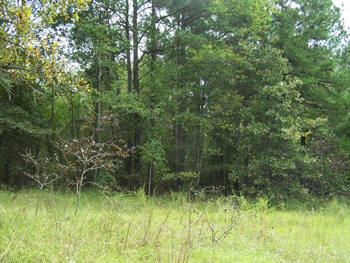 Secluded Homesite : Wrens : Jefferson County : Georgia