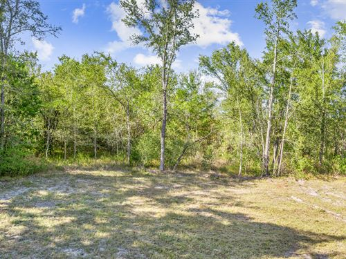 4.10 Acres, 4033 Union Road : North Zulch : Madison County : Texas