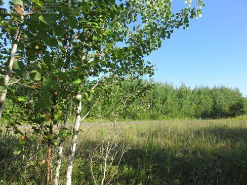 Wooded Acreage Lot In Douglas Cty : Solon Springs : Douglas County : Wisconsin