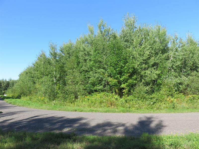 Wooded Residential Lot In Douglas : Solon Springs : Douglas County : Wisconsin