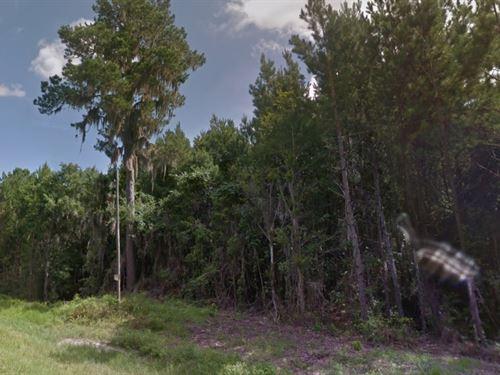 Sarasota County, Fl $15,000 Neg : White Springs : Sarasota County : Florida