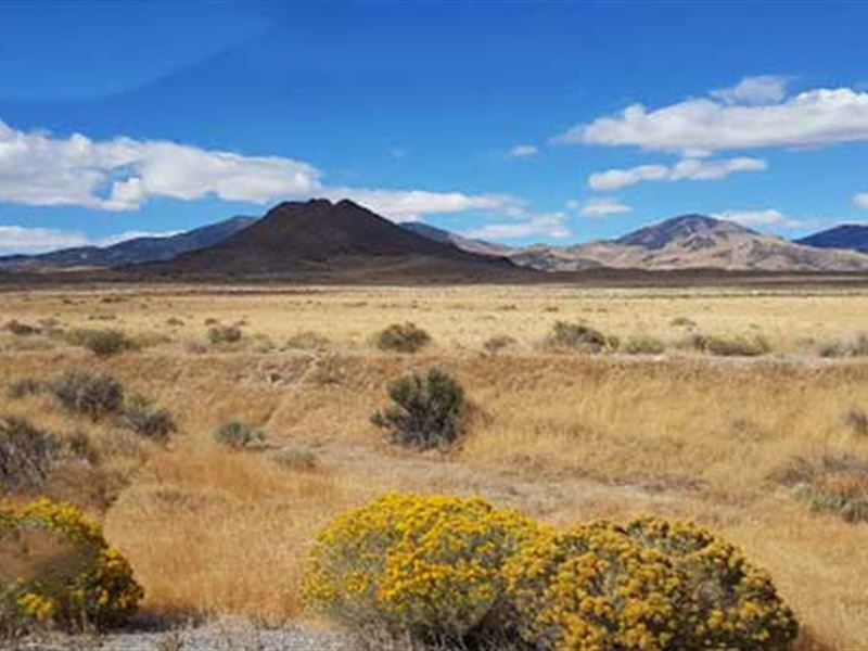 Cowboy Country Quiet-Creek-Views : Montello : Elko County : Nevada
