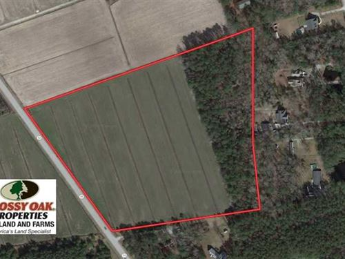 16.3 Acres of Farm And Timber Land : Oriental : Pamlico County : North Carolina