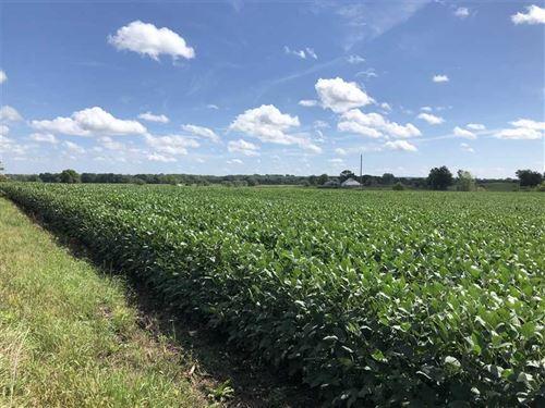 155 Acres Row-Crop, Pasture : Calhoun : Henry County : Missouri