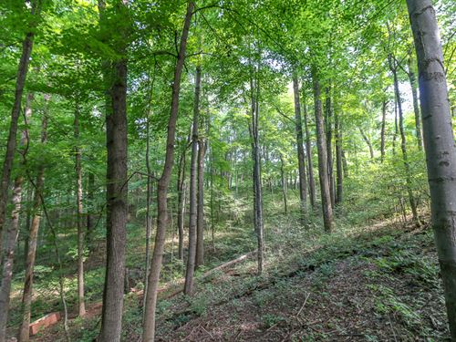 Jack Run Rd, 6 Acres : Lancaster : Hocking County : Ohio