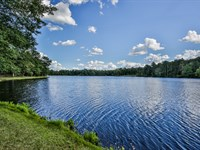Shoreline At Brooks Lake : Conyers : Rockdale County : Georgia