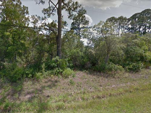 Wakulla County, Fl $32,000 : Panacea : Wakulla County : Florida
