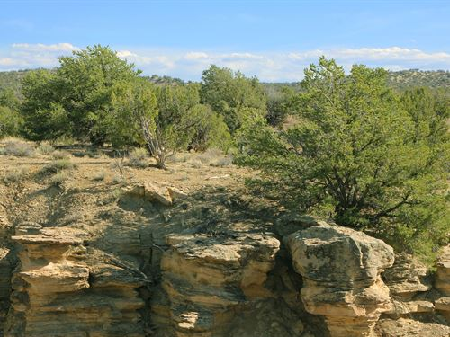 Scenic Northern Arizona Ranch : Saint Johns : Apache County : Arizona