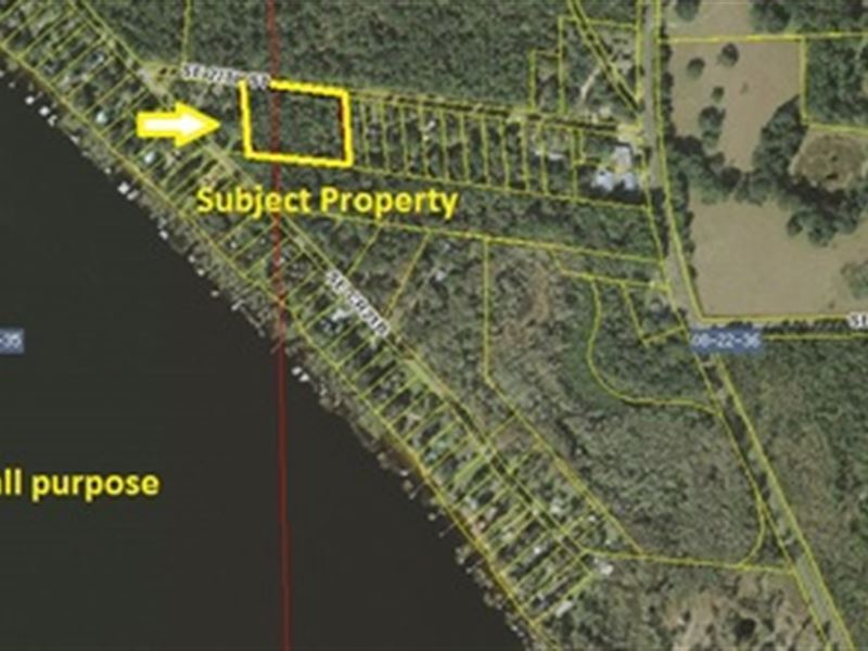 Beautiful Treed Acres A-544 : Melrose : Bradford County : Florida