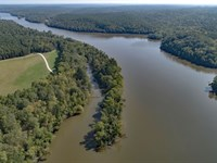 67+/- Acres On Lake Wateree : Great Falls : Fairfield County : South Carolina