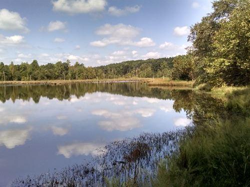 Great Recreational Property : Union : South Carolina