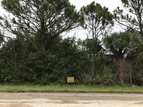 Great Lot, Up & Coming Neighborhood : Punta Gorda : Charlotte County : Florida