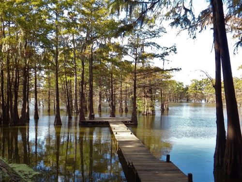 Paradise Found This One Of A Kind : Woodville : Wilkinson County : Mississippi