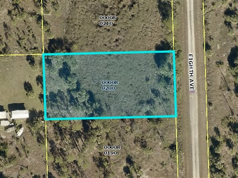 Wooded Lot For Sale $12,000 : Lehigh Acres : Lee County : Florida