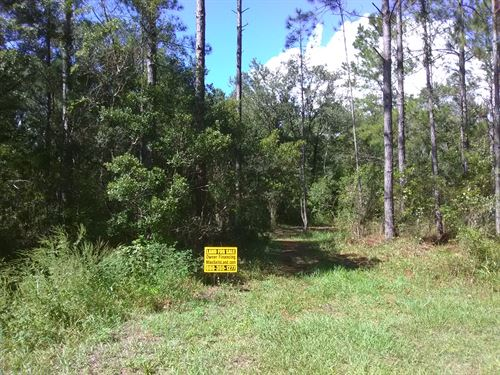 2.07 Acre Corner Lot - Mobiles Ok : Hastings : Saint Johns County : Florida