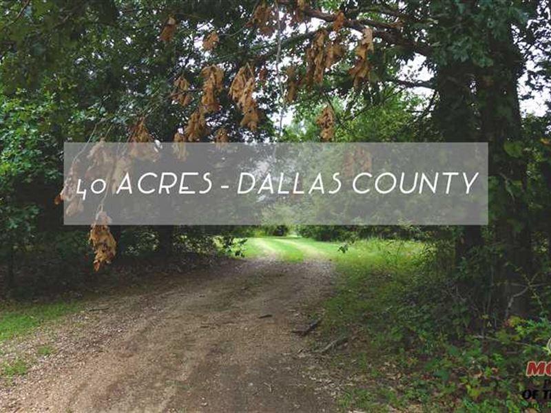 40 Acre Hobby Farm With Clean Mobi : Louisburg : Dallas County : Missouri