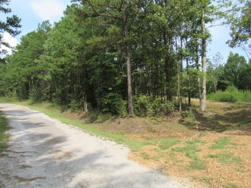 10.7 Acres In Lafayette County : Oxford : Lafayette County : Mississippi
