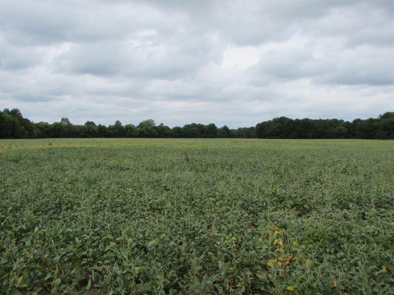 Koons Farm : Vera : Washington County : Oklahoma