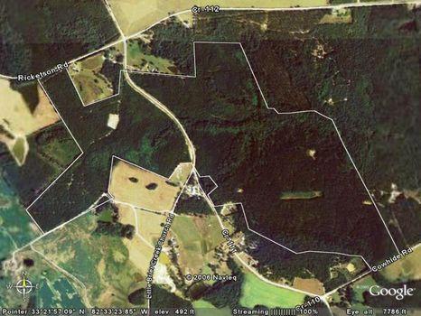 377 Acres : Warrenton : Warren County : Georgia