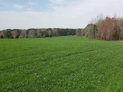 44.06 Acres In Littleton, NC : Littleton : Halifax County : North Carolina