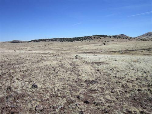 3.03 Acres In Concho, AZ : Concho : Apache County : Arizona