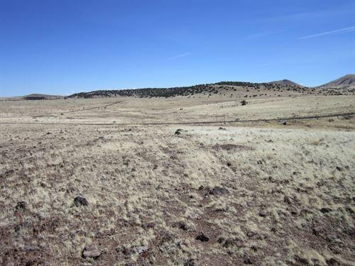 1.01 Acres In Concho, AZ : Concho : Apache County : Arizona