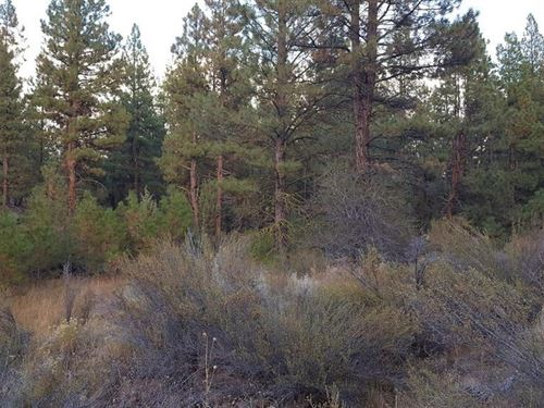 2.32 Acres In Beatty, OR : Beatty : Klamath County : Oregon