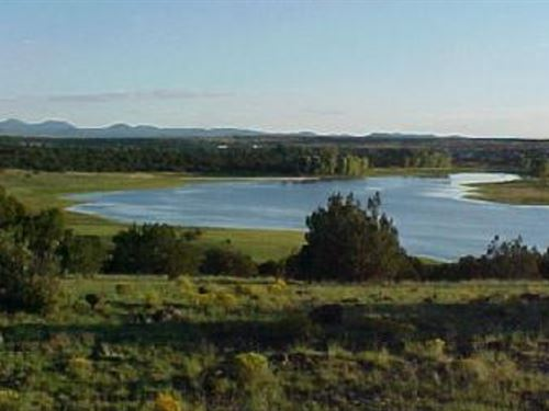 1.14 Acres In Concho, AZ : Concho : Apache County : Arizona