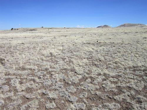 1.06 Acres In Concho, AZ : Concho : Apache County : Arizona