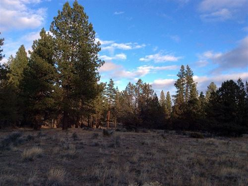 3.42 Acres In Beatty, OR : Beatty : Klamath County : Oregon