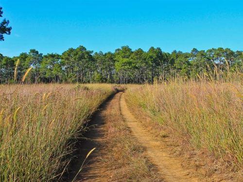 .52 Acres In Four Oaks, NC : Four Oaks : Johnston County : North Carolina