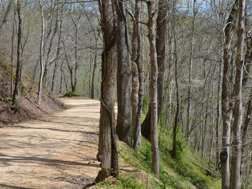 9.8 Acres In Centerville, TN : Centerville : Hickman County : Tennessee