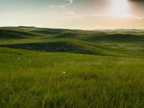 Sandhills Hunting Ranch : Hyannis : Grant County : Nebraska