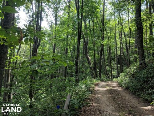 Long Range Views Nestled Between As : Asheville : Buncombe County : North Carolina