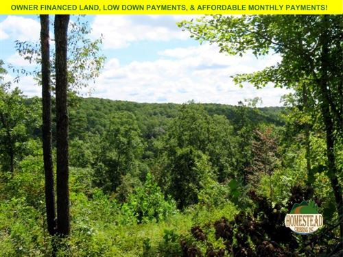 Large River Parcel With Scenic View : Houston : Texas County : Missouri