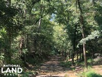 Florence Byram Rd 7.5 Acre Property : Florence : Rankin County : Mississippi