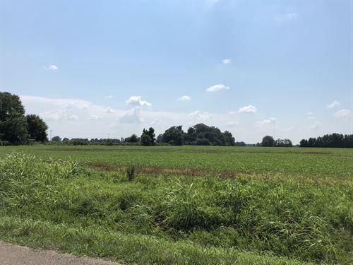 For Sale 42+/- Acres Crop Land : Gadsden : Crockett County : Tennessee