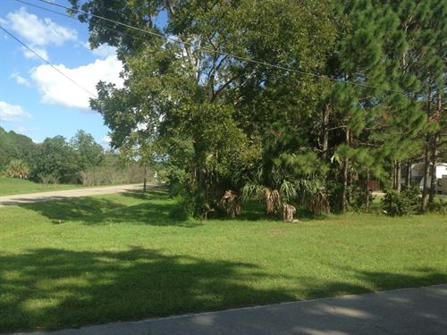 Gulf County, Fl $98,000 : Port St Joe : Gulf County : Florida