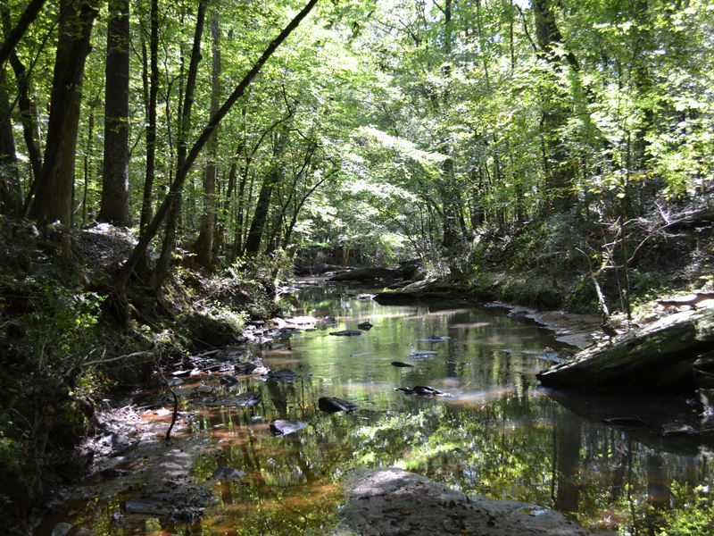 Rum Creek : Forsyth : Monroe County : Georgia