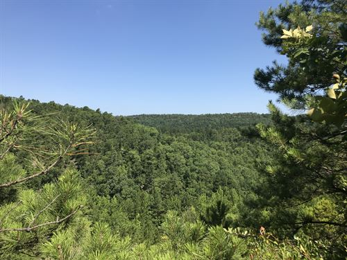 Jack Mountain Wma : Bismarck : Hot Spring County : Arkansas