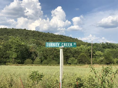 Turkey Creek : Mountain View : Stone County : Arkansas