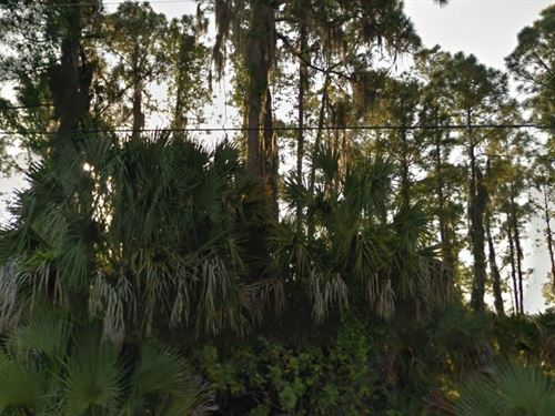 Sarasota County, Fl $20,000 Neg : North Port : Sarasota County : Florida