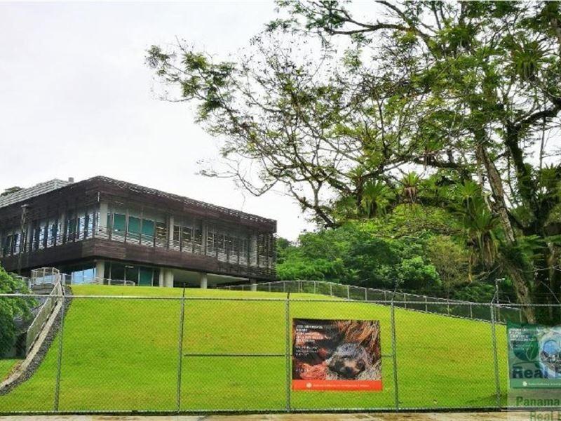 Gamboa House For Sale, Panama : Gamboa : Panama