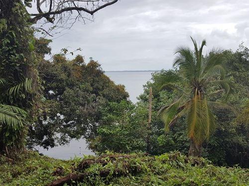 Titled Coastal Land, 20 Acres Bocas : Shark Hole : Panama