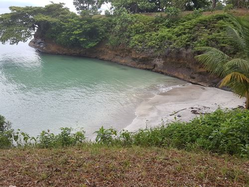 Bocas Del Toro Panama Coastal Sand : Punta Laurel : Panama