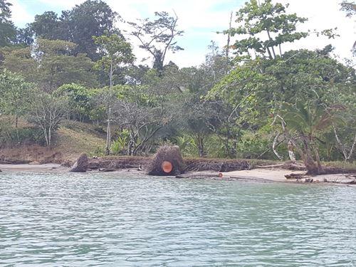 Beautiful Bocas Del Toro Coastal : Punta Laurel : Panama