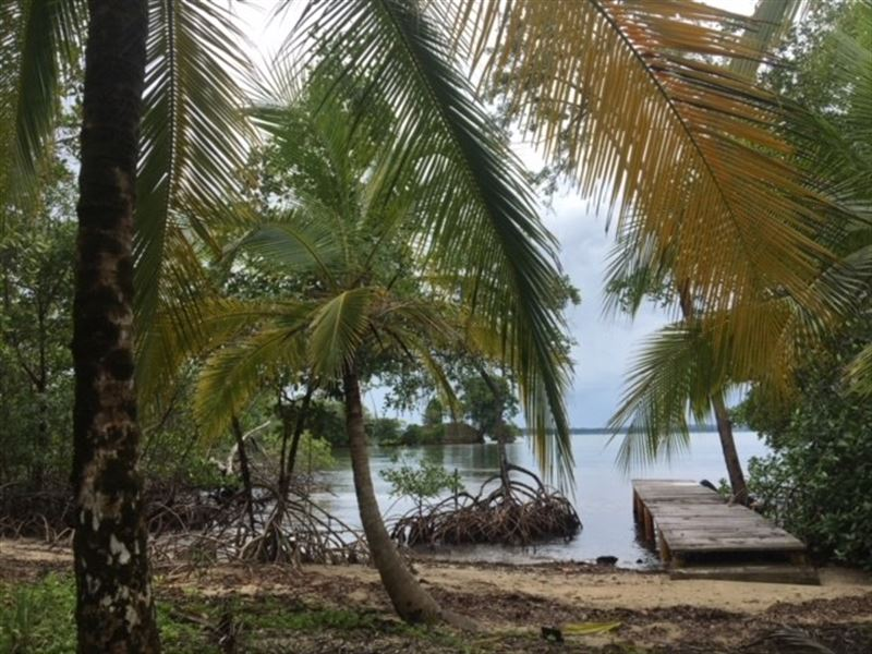 Great Views, Coastal Land Isla Popa : Punta Laurel : Panama